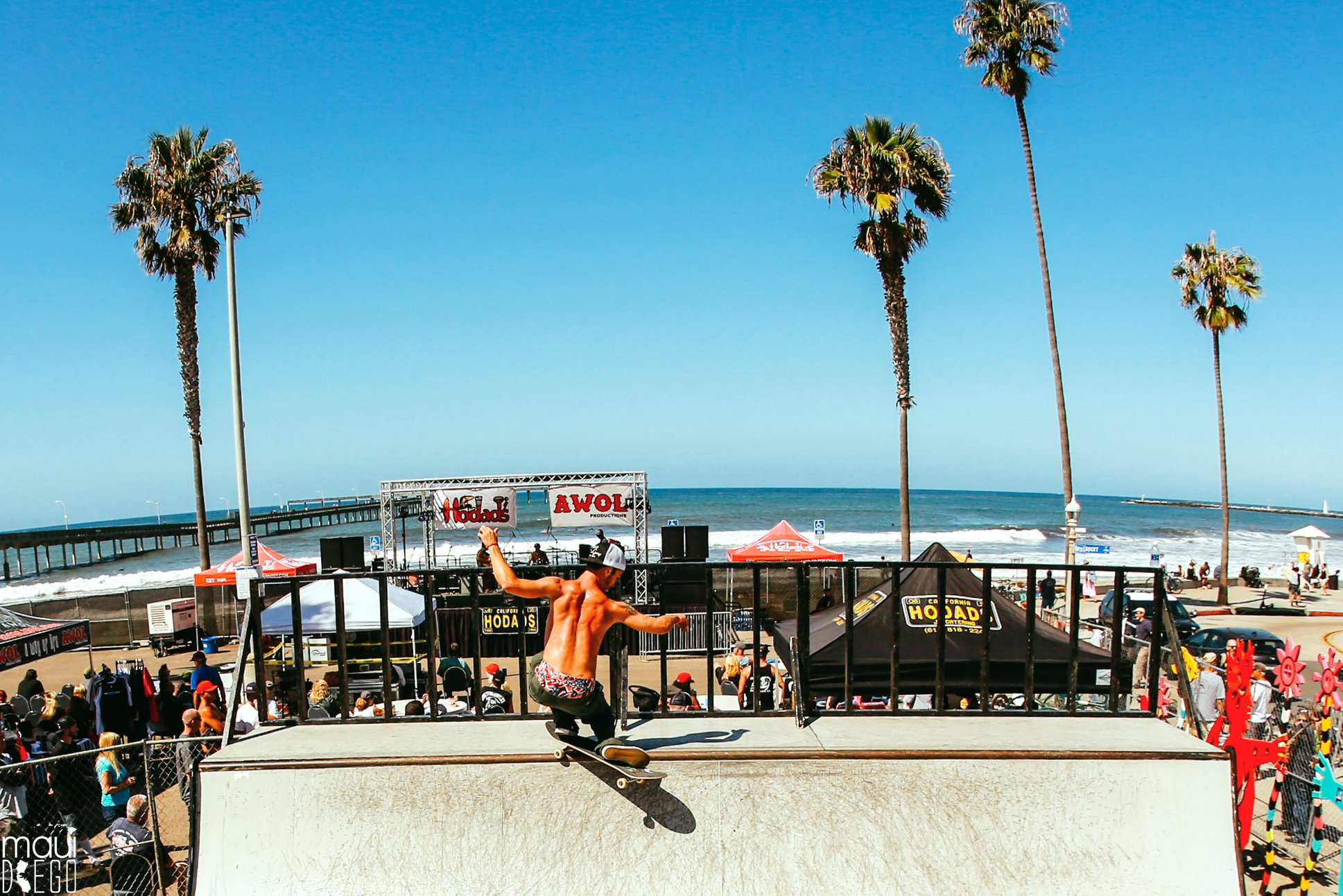 Hodads 50th Anniversary Skate8